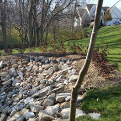 Renovated creek bed with a rocky shore