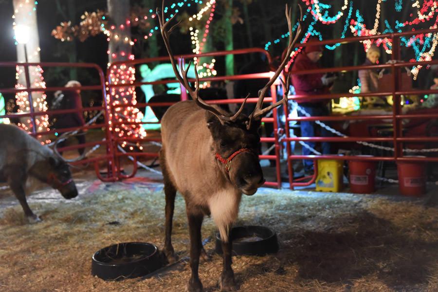 Christmas In Ofallon 2021 Celebration Of Lights City Of O Fallon Missouri